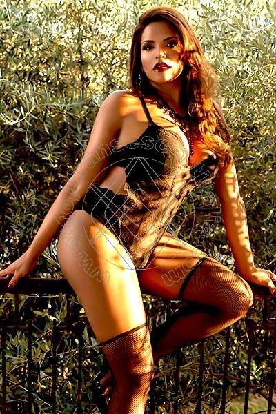 Belle Bruna PARMA 3312911901